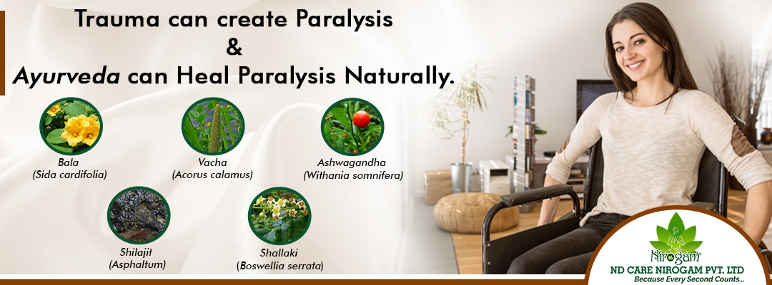 Ayurvedic paralysis Treatment
