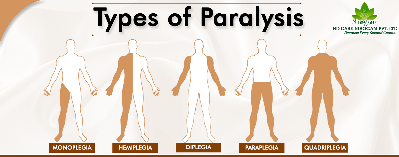 paralysis Treatment